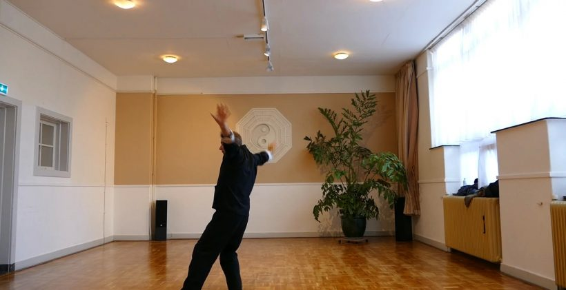 Willem - Freestyle Butterfly I Workshop [Video]